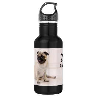 Pugs Not Drugs Stainless Steel Water Bottle