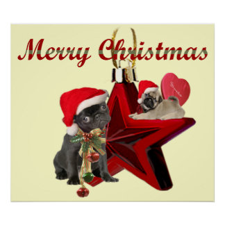 Pugs on Christmas Star  Poster