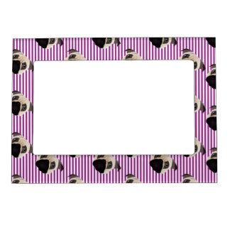 Pugs on Purple Stripes.jpg Magnetic Frame