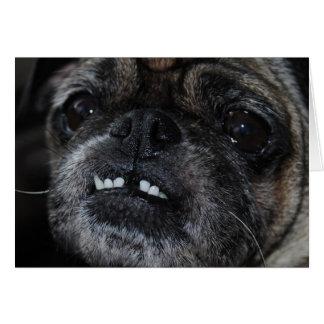 Pugs Pearly White Teeth Card
