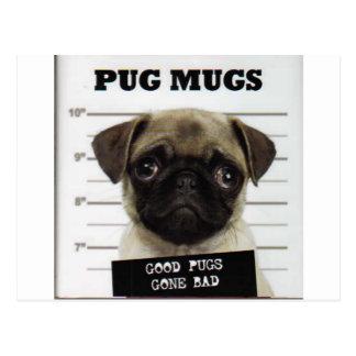Pugs Postcards