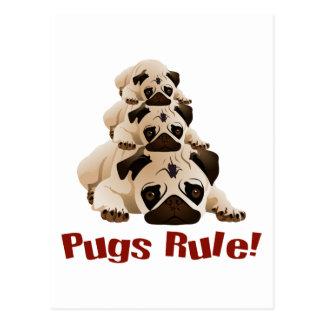 Pugs Rule! 1 Postcard