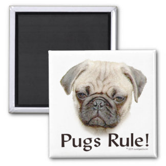 Pugs Rule 2 Inch Square Magnet