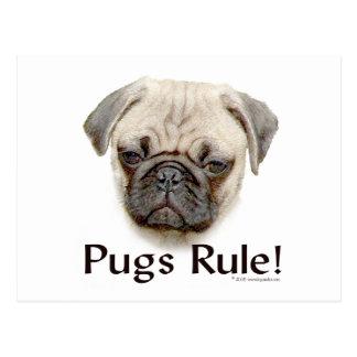 Pugs Rule Postcard