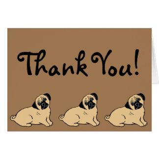 Pugs Thank You Card