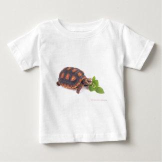 puka tshirt