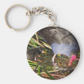 Pukeko and Chick Splashing Keychain
