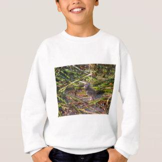 Pukeko Chick Sweatshirt