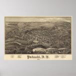 Pulaski, poster 1885 de la opinión del ojo de pája