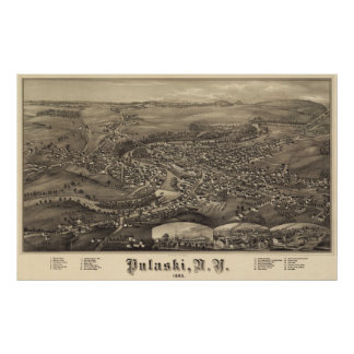 Pulaski poster 1885 de la opinión del ojo de pája