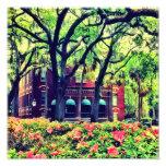 Pulaski Square, Savannah Photo Art