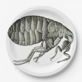 Pulga microscópica platos de papel