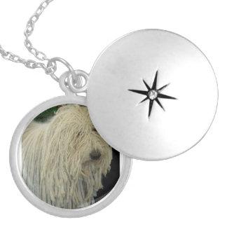Puli.png Locket Necklace