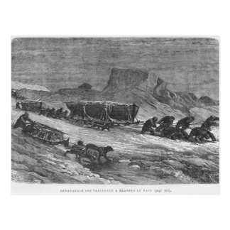 Pulling the sledges through the pack ice postcard