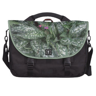 Pulmonaria - Lungwort perennial Laptop Commuter Bag