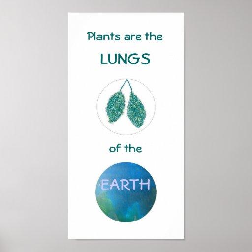 Pulmones de la tierra - poster