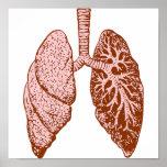 Pulmones Impresiones