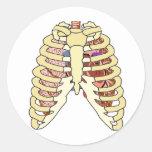 Pulmones y corazón de la caja torácica pegatinas redondas