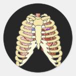 Pulmones y corazón de la caja torácica pegatinas