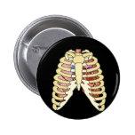 Pulmones y corazón de la caja torácica pin