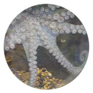Pulpo con tentáculos expuestos de la ventosa platos