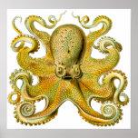 Pulpo de Ernst Haeckel del vintage en amarillo Poster