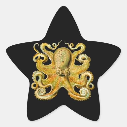 Pulpo de Ernst Haeckel del vintage en amarillo Pegatina En Forma De Estrella