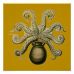 Pulpo de Haeckel Poster