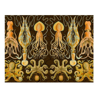 Pulpo del calamar de los cefalópodos del vintage tarjeta postal