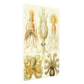 Pulpo Gamochonia del calamar del vintage de Ernst Impresión En Tela
