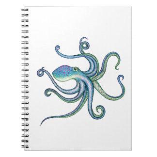 Pulpo Notebook