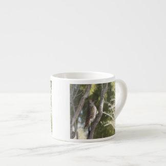 Pulsación de corriente septentrional femenina del  tazas espresso