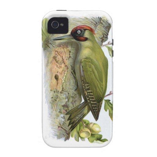 Pulsación de corriente verde - viridis del Picus iPhone 4/4S Funda