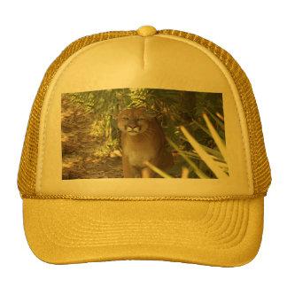 Puma 002 gorra