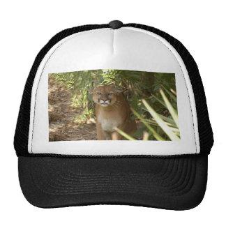 Puma 002 gorras
