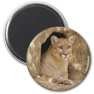 Puma 011 imán redondo 5 cm
