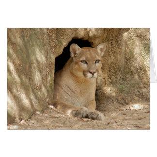 Puma 011 tarjetas