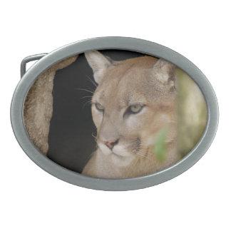 Puma 013 hebilla cinturon