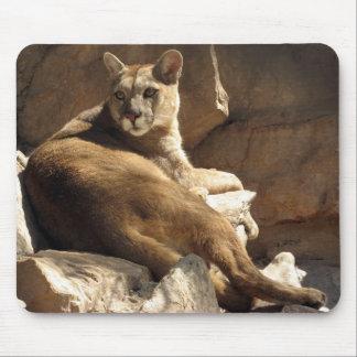 Puma and rocks mouse pad