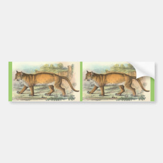 Puma Bumper Sticker
