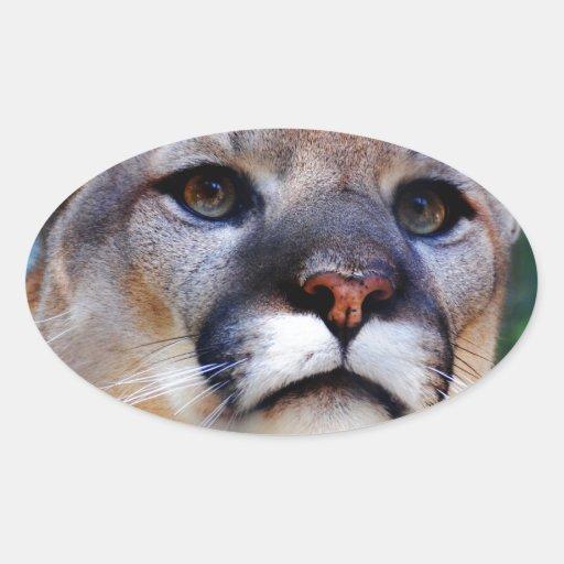 Puma Calcomania De Oval