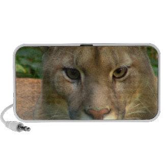 Puma Cat Speakers