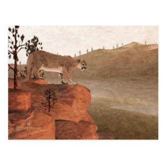 Puma - concentración tarjeta postal