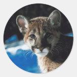 Puma Cub Pegatina Redonda