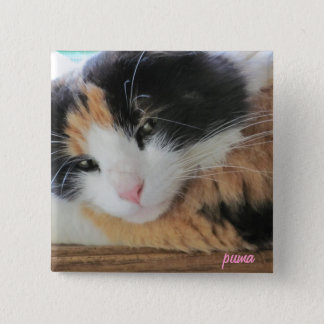 Puma Cute Calico Cat Button