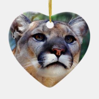 Puma Ornatos