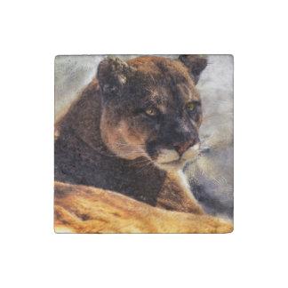 Puma del gato grande, retrato 2 de la foto de la imán de piedra