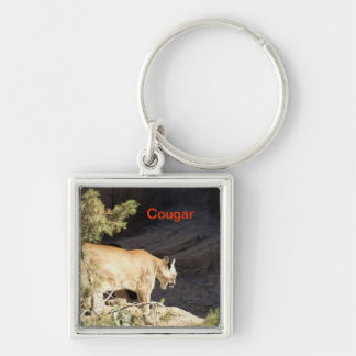 Puma del llavero