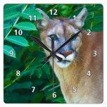 Puma en el reloj de la selva