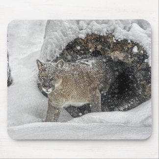 Puma en la nieve Mousepad Tapetes De Ratón